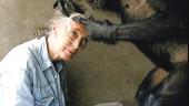 vista previa del artículo Gorilas en la… UA
