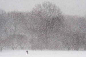 fuerte nevada