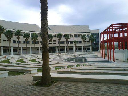El Consejo de Gobierno aprueba la fijación de la UA a la Red de Universidades Saludables 2