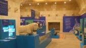 vista previa del artículo Museo de la ciudad de Alicante