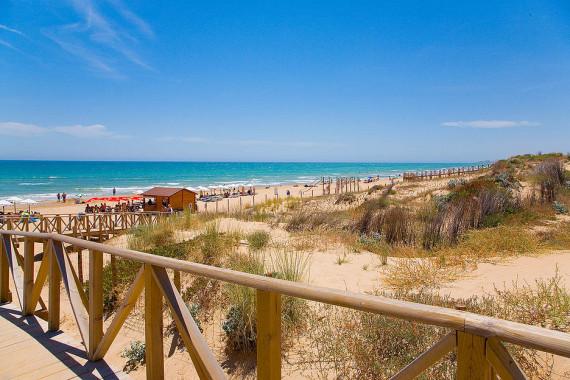 Playa Los Tusales - Guardamar del Segura